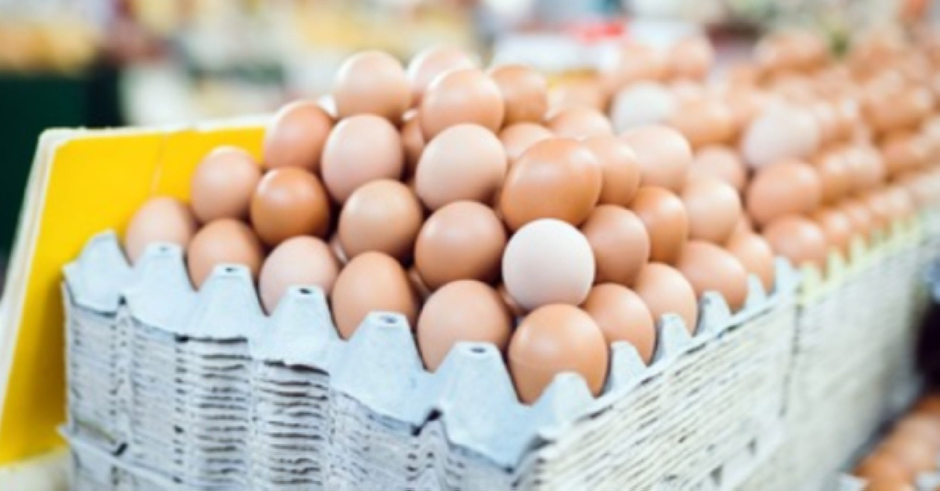 man-dies-after-eating-41-eggs-in-the-challenge