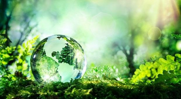 World-Environment-Day-2020-1